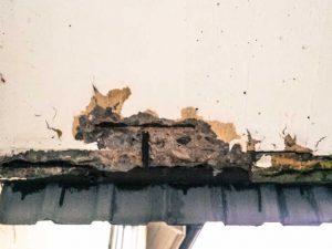 Karbonatiseringsskadad balkong med synliga, rostiga armeringsjärn.
