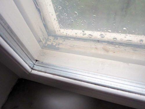 Detaljbild av fönster med kondens och fuktskador mellan fönsterbågarna